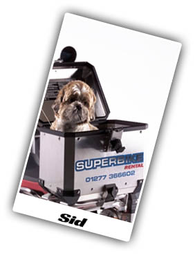 Sid the Dog from Superbike